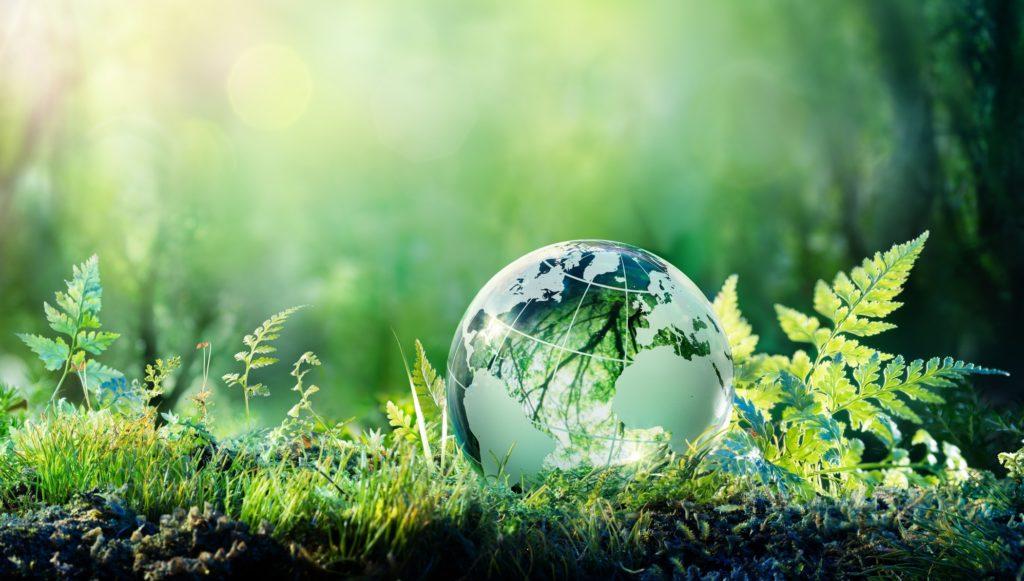 5. jun – Svjetski dan zaštite životne sredine